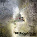 Dreamsign by Stephanie Pui-Mun Law